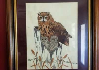 Owls  by Lady Kathleen
